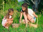 Colheitas de bagas e cogumelos - meninas encantadoras — Fotografia Stock