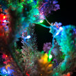 Shining lights of a natural Christmas — Stock Photo