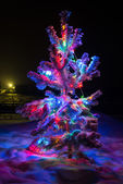 Shining lights of a natural Christmas — Photo