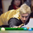 Neil Robertson of Australia — Stock Photo