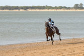 Horse racing San Lucar — Foto Stock