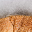 Mouldy bread — Stock Photo