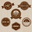 Vintage Badge set - Stock Vector