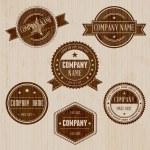 Vintage Badge set — Stock Vector #22476273