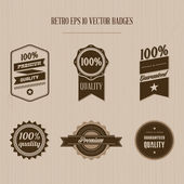 Vintage badge set — Stock Vector