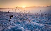Frozen ground with sunset — Foto de Stock