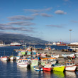 Azores, Sao Miguel yacht and fishing harbor — Stock Photo #49857541