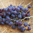 Brunch of grapes — Stock Photo