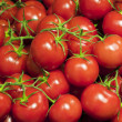 Fresh ripe cherry tomatoes — Stock Photo