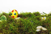 Colorful yellow Easter Egg on moss — Stock Photo