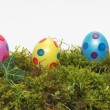 Panorama banner of Easter Eggs - Stok fotoraf