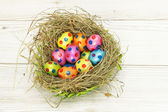 Nest full of colorful Easter Eggs — Stock Photo