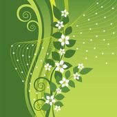 White Jasmine flowers on green swirls background — Stock Vector