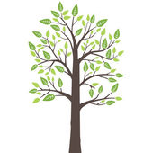 Stylized lone tree with fresh young leaves in spring — Stockvector
