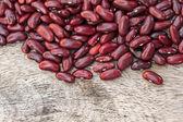 Haricots rouges — Photo