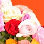 Rose flower — Stock Photo #8049986