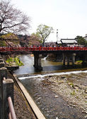 TAKAYAMA RED BRIDGE ON FESTIVAL TIME WITH SAKURA — Stock Photo