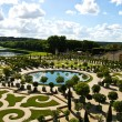 Decorative gardens , Versailles Castle , France   — Stock Photo