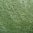 Texture of green terry towel - Foto Stock