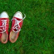 Sport shoes on grass background — Stock Photo