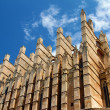 Detail of Mallorccathedral in Palma, Spain — Stock Photo #26239645