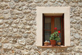 Window with flower pots on the stone building wall — Stock Photo