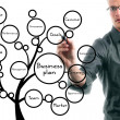 Businessman drawing conceptual business plan tree — Stockfoto #35194033