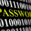 Stock Photo: Internet password security concept - binary code with text