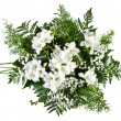 White freesia bouquet isolated on white background — Stock Photo