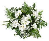 White freesia bouquet isolated on white background — Stock Photo
