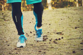 Running training in the woods — Foto Stock