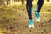 Running along the forest trail — Stock Photo