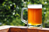 Cold beer mug in sunny summer day — Stock Photo