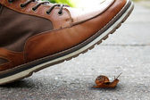Boot and snail — Stock Photo