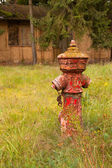 The red color is peeling off the hydrant — Stock Photo