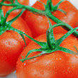 Stock Photo: Branch of tomatoes isolated