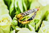 Beautiful background with wedding rings — Stock fotografie
