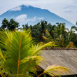 Royalty-Free Stock Photo: Landscape indonesia, bali
