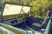 Car in jungle — Stock Photo