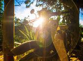 Moto de luz natural — Foto de Stock