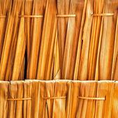 Nature texture — Stock Photo
