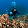 Scuba Diver taking pictures on a Hawaiian Reef — Stockfoto