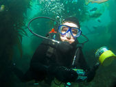 Close Up Diver in the Catalina Kelp — Stock Photo