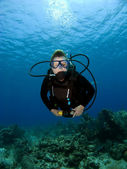 Diver looking into the Camera — Stock fotografie