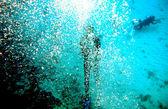Fantasy Bubble Diver — Stock Photo