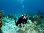 Female Scuba Diver looking at the Camera — Stock Photo