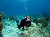 女潜水员看摄像机 — 图库照片