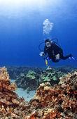 Scuba Diver with a Camera in Kona Hawaii — Stock Photo