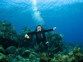 Smiling Scuba Diver descending on a Reef — Stock Photo