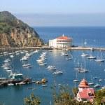 Catalina Island — Stock Photo #14497739